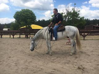 El Bronco, Unkari, reining, lännenratsastus, Riitta Reissaa, Horsexplore