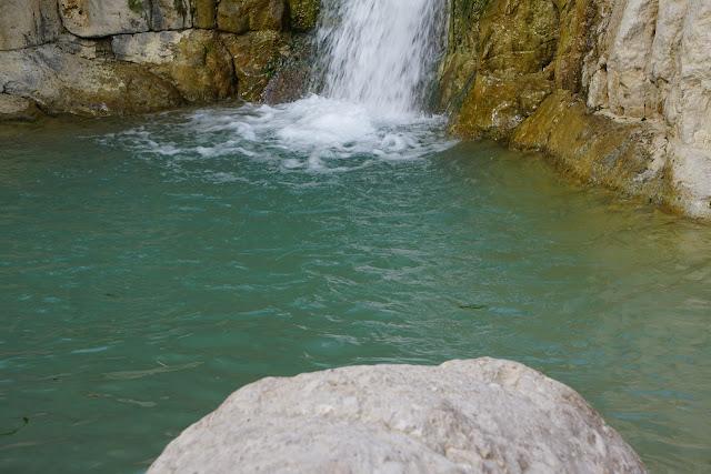 מים בבריכה בנחל דוד