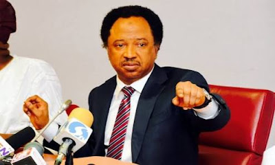 APC Headquarters Over-Rules Kaduna Chapter, Nullifies Shehu Sani's Suspension