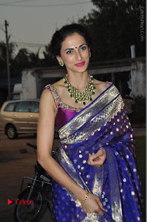 Model Shilpa Reddy Stills in Purple Silk Saree at Gudi Sambaralu 2017 Sri Ramachandra Swami Temple  0058.JPG