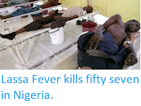 http://sciencythoughts.blogspot.co.uk/2018/02/lassa-fever-kills-fifty-seven-in-nigeria.html