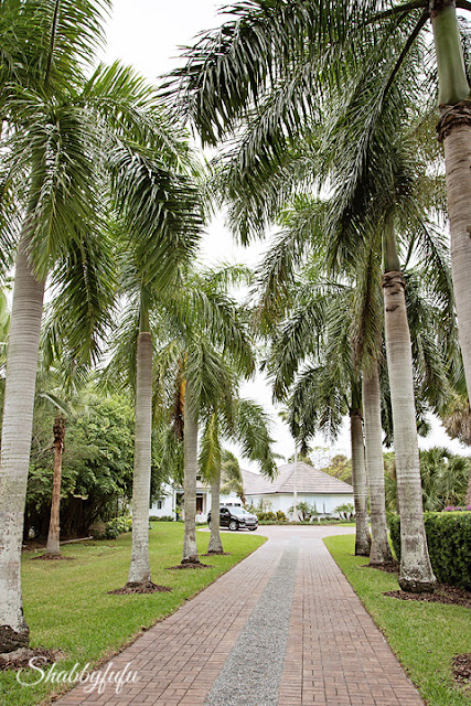 The palm-tree lined driveway up to the HGTV Dream Home 2016.