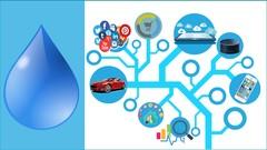 REST API Design, Development & Management