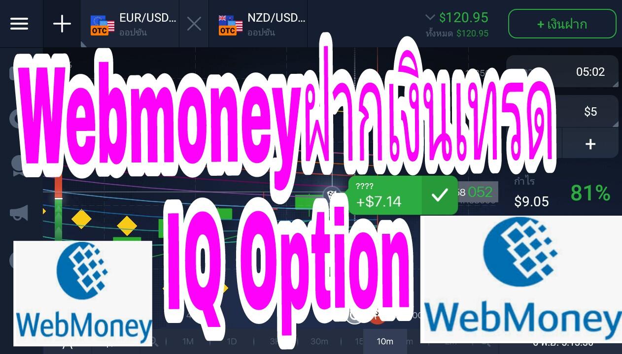 investiții pe internet webmoney