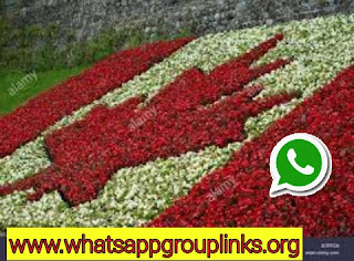 www.whatsappgriuplinks.org