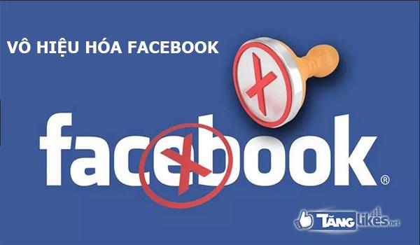 vo hieu hoa facebook