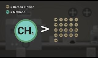 Methana Hasil Pengolahan Ternak Sapi Ala Industri Modern Yang Dapat Merusak Bumi, kandungan methana yang sangat berbahaya bagi bumi, zat methana yang 21 lebih besar daripada carbon diokside