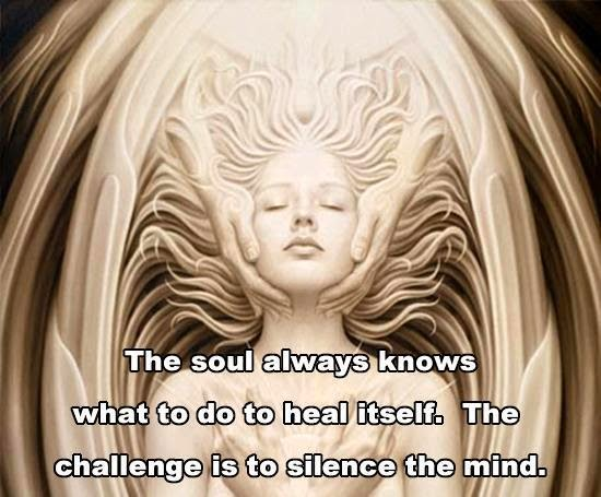 Twin Souls: Silence Is Golden: The Insight Begins: After The