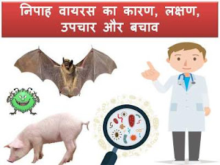 nipah-virus-symptoms-treatment-hindi