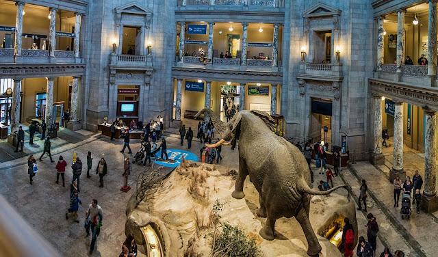 Museu da História Natural de Los Angeles