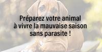 Préparez votre animal à vivre la mauvaise saison sans parasite !