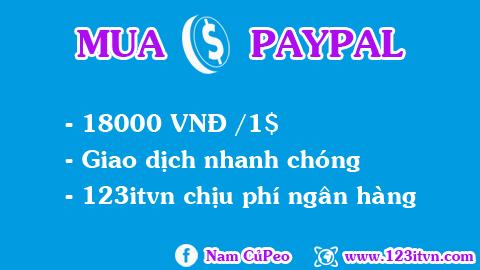 Dịch vụ mua dollar paypal 123itvn.com