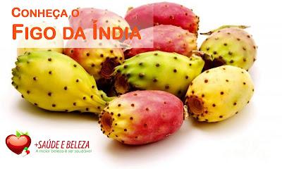 Conheça agora os benefícios e propriedades do Figo da Índia