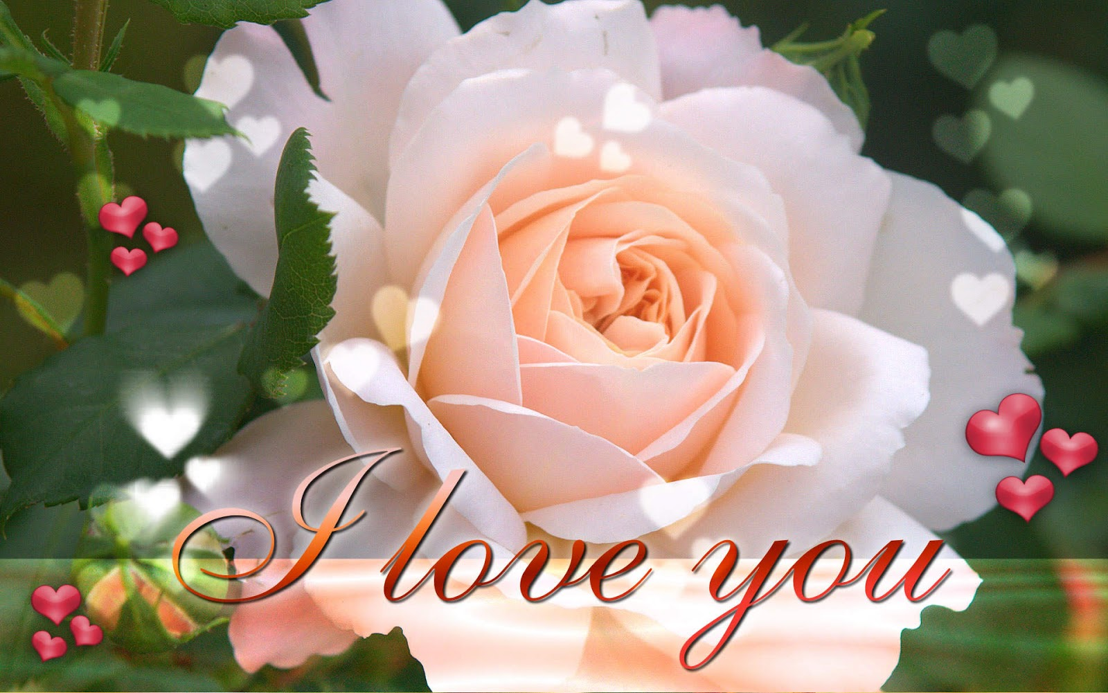 Amazing Wallpapers: I Love You Wallpaper, I Love You