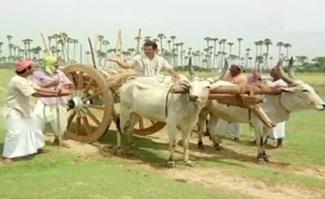ஏன்டா மண்டைல ஒன்னும் இல்லனு பாத்தா உள்ளையும் ஒன்னும் இல்லையா இது காளை மாடுடா