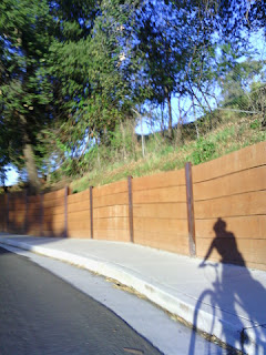Shadow of pep and bicycle in late-day light next to a retaining wall. (Narrative Clip)