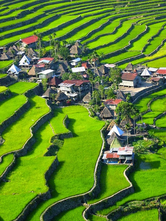 10 Most Famous Travel Destinations In Philippines | Banaue Rice Terraces, Philippines