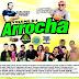 Cd (Mixado) Arrocha 2017 - Vol:04 2017 (Dj Luys DNight e Bruninho do Comercio)