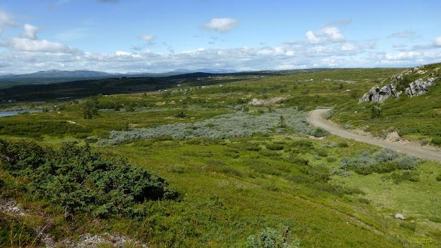 Groene heuvels in Noorwegen