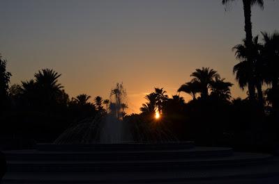 Puesta de sol con palmeras
