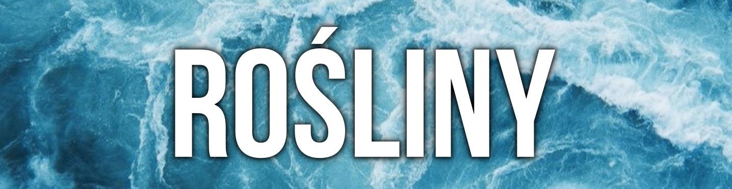 stroje kąpielowe lato 2017 trendy bikini