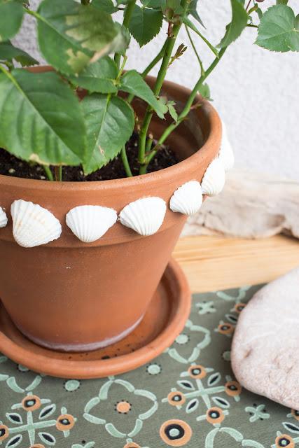 DIY | Blumentöpfe mit Muscheln gestalten - Ideen fürs Basteln und Selbermachen