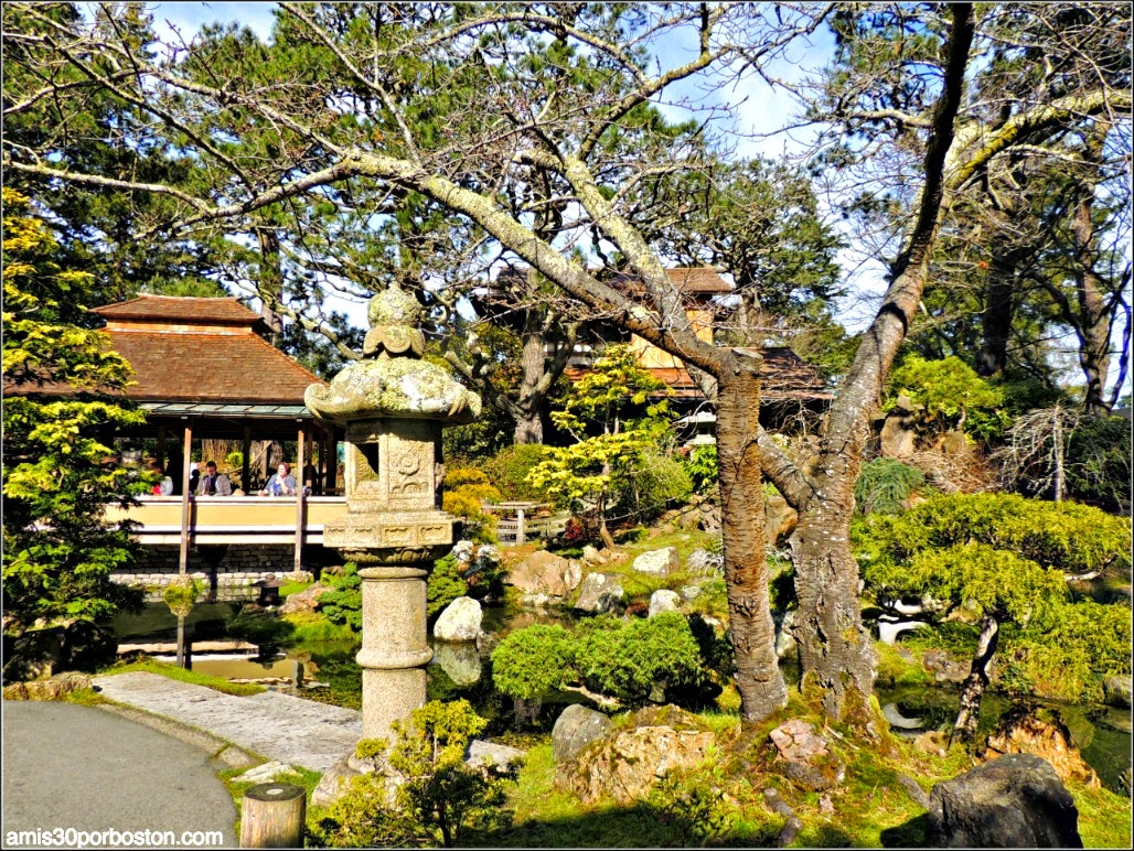 Japanese Tea Garden: San Francisco