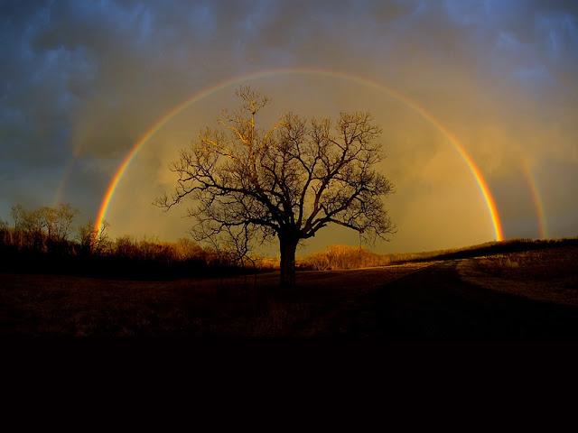 http://www.imagenetz.de/f287a6852/Amazing-Grace.ppsx.html