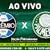 Jogo Grêmio x Palmeiras Ao Vivo 06/06/2018