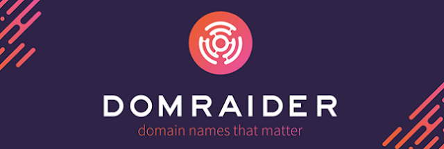 DomRaider, Platform Lelang Nama Domain Terdesentralisasi