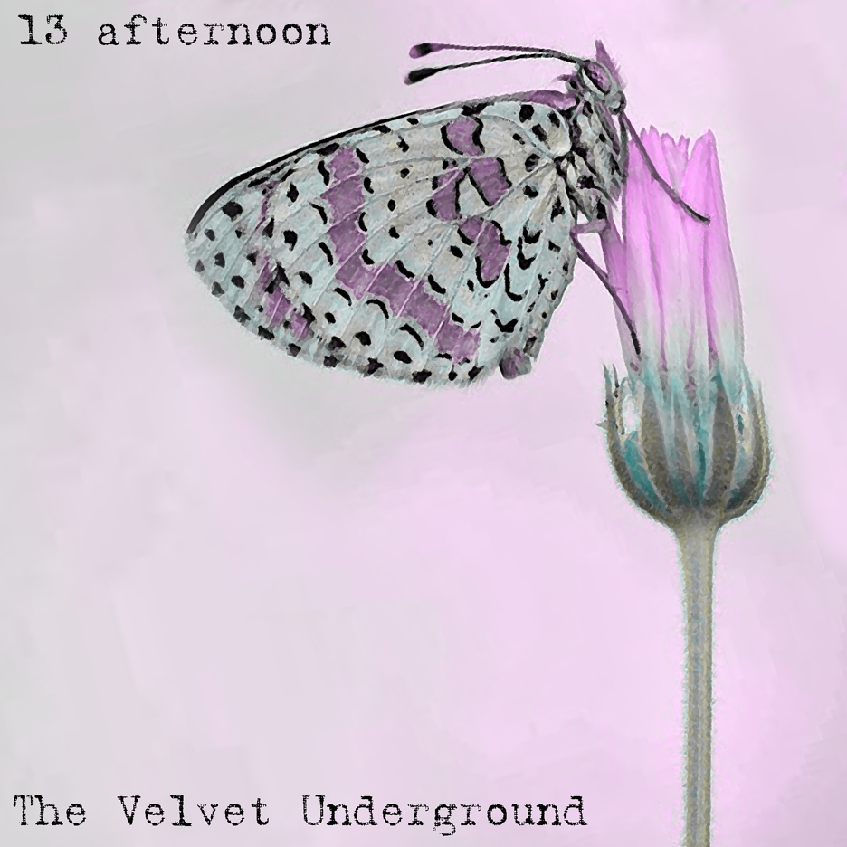 THE VELVET UNDERGROUND - 13 afternoon