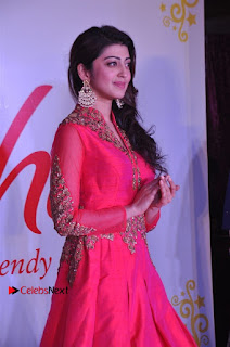 South Indian Celebrities Pos at Love For Handloom Collection Fashion Show  0045.jpg