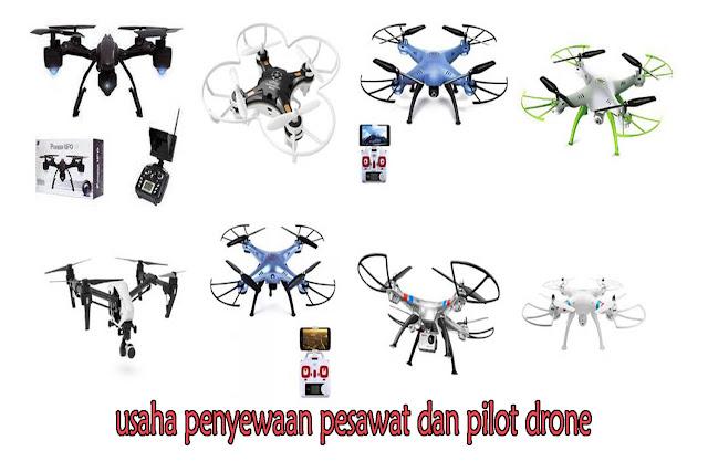 peluang usaha pilot drone