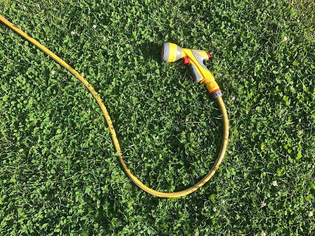 A hose on freshly cut green grass