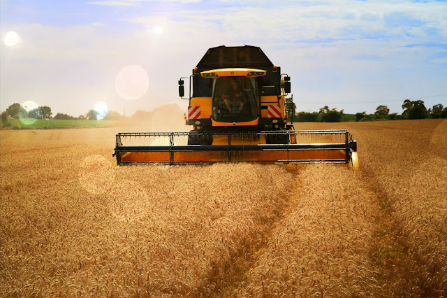 Five Storage Tips for your 2018 Grain Harvest
