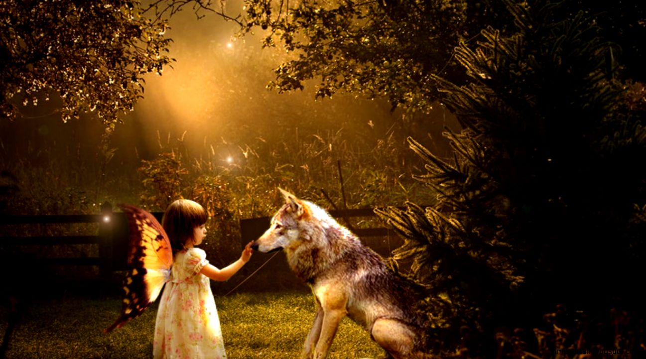 Girl With Wolf Wallpaper Mega Wallpapers