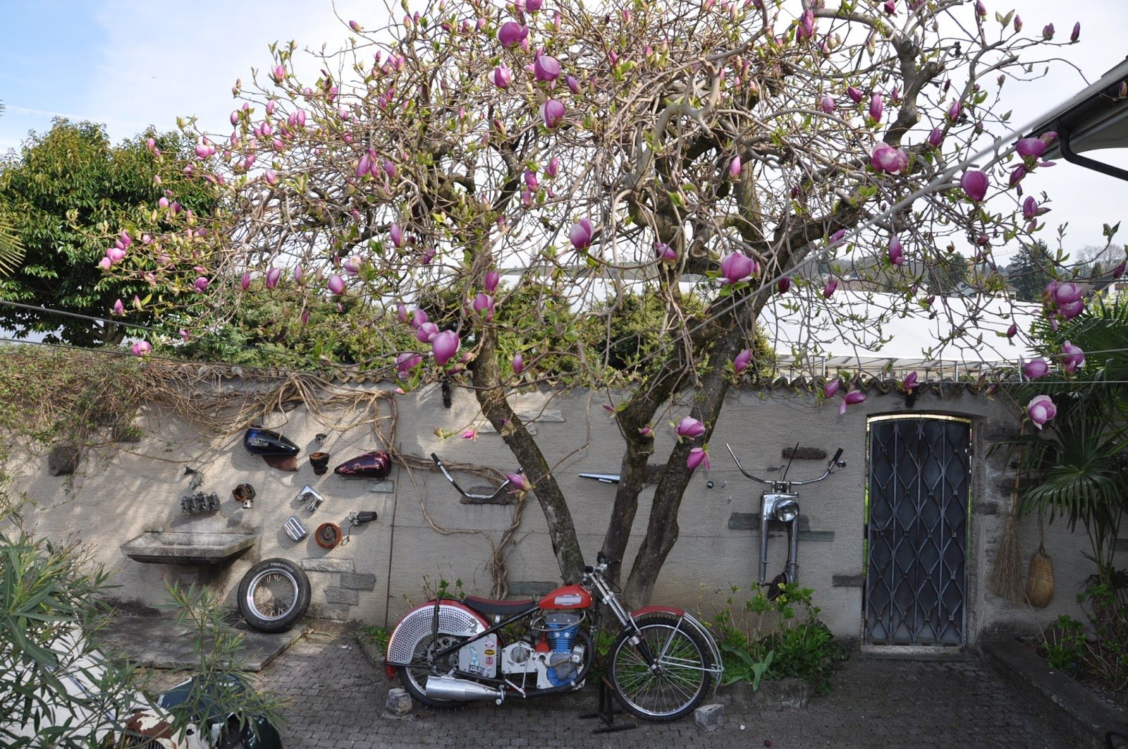 Kraftstoff motomania lifestyle blog garten eden for Garten eden