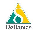Logo Kota Deltamas