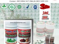 Obat Sipilis Herbal Alami De Nature - Gang Jie Gho Siah