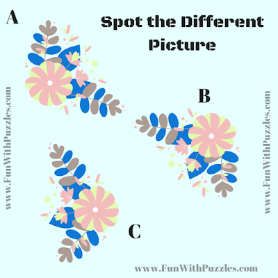 Find the Odd One Out Picture Puzzle