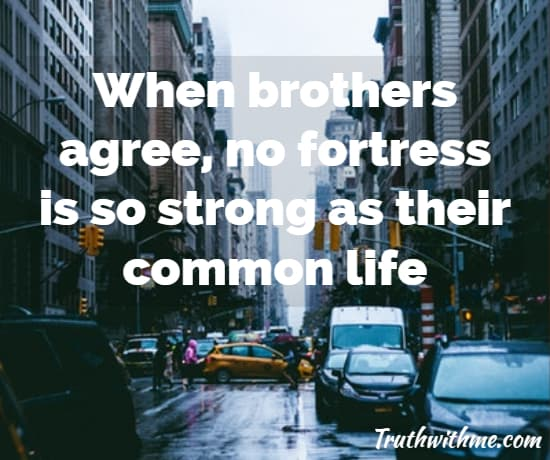 Best Brother Quotes Brothers For Life Quote