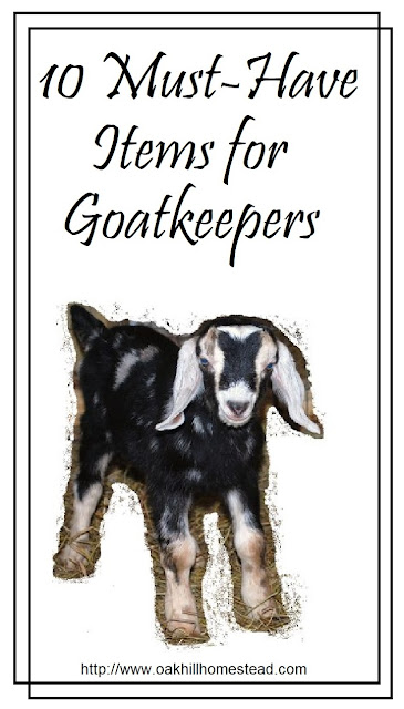 Here are the ten most-important goat-keeping items on my homestead! | from Oak Hill Homestead
