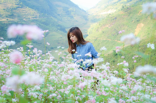 There is a Romantic Studio In Ha Giang 4