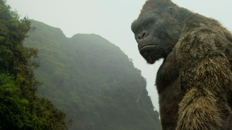 Why Vietnam was the perfect location for Kong: Skull Island