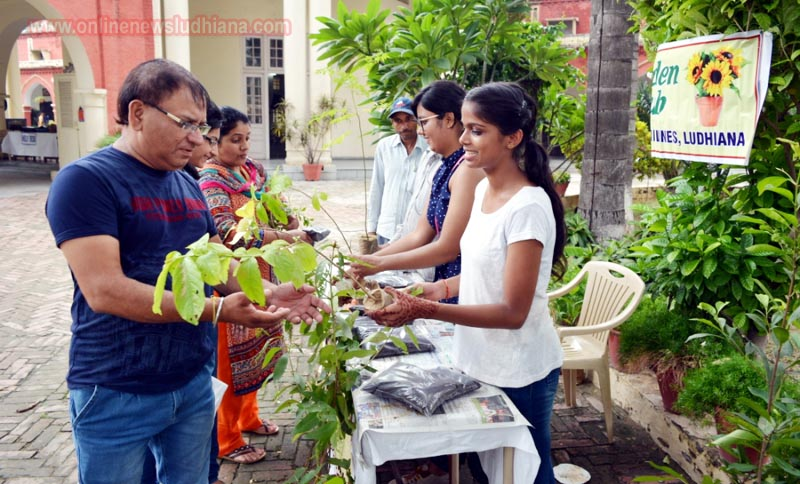 Students distributing saplings during Van Mahotsava Celebrations at KCW
