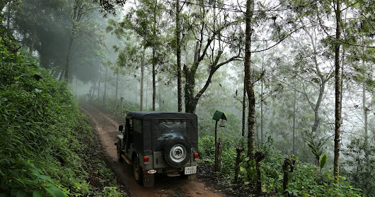 A New Experience Surrounded With Greenery in Munnar