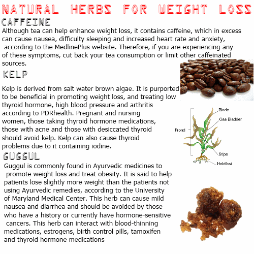 Weight Loss With Herbs The Truth About Herbs And Loss Weight