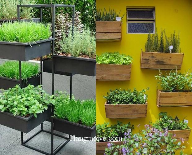 Gỗ được sử dụng vừa trồng rau vừa trang trí kết hợp với tường hay giá đỡ để tạo một không gian đẹp