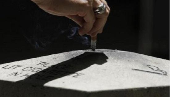Apa Itu Rokok? 4000 Zat Kimia Dalam 1 hisapan - Everylogi