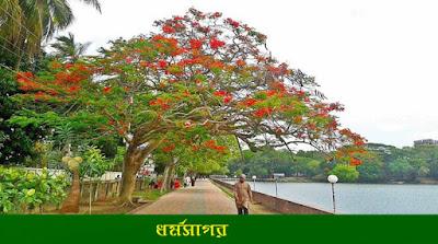 কুমিল্লা ধর্মসাগরের ইতিকথা